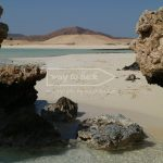 Sharm El Luli Felsen