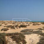 Sharm El Luli Wüste