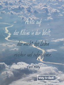 """Zitat. """"Achte auf das Kleine in der Welt, das macht das Leben reicher und zufriedener."""" - Carl Hilty"""